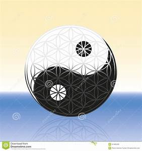 Flower Of Life Yin Yang Spheres Stock Image - Image: 41483493
