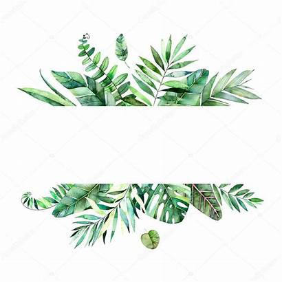 Leaves Tropical Palm Frame Forest Colorful Watercolor