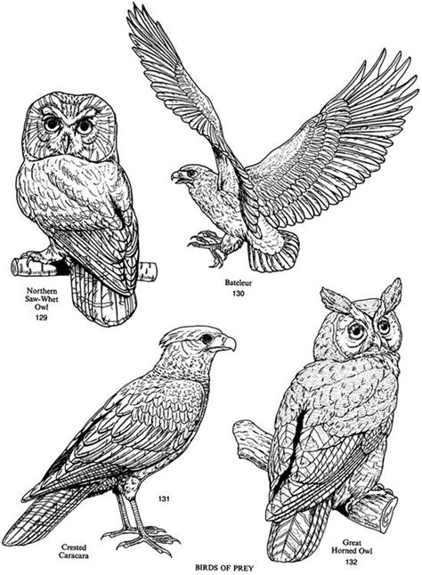 163 best Dover Publications Royalty Free Images images on