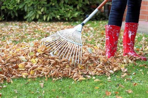 garten im november fit f 252 r den winter tipps f 252 r die gartenarbeit