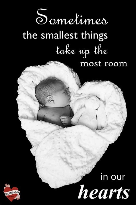 newborn baby quotes  pinterest cute baby quotes