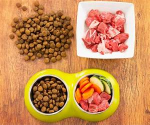 Best dog food for small breeds for Akc dog food