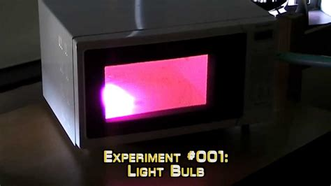 microwave this light bulb