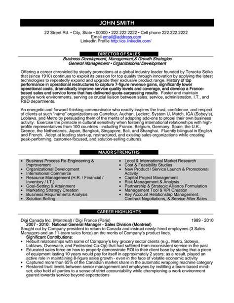 director of sales resume template premium resume sles
