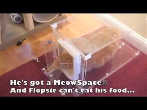 17536 Cat Box Coupon Code by Meowspace 174 Cat Feeder Litter Box Station
