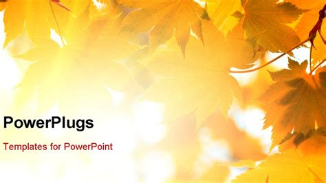 fall powerpoint templates  yasncinfo