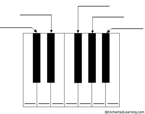 Label The Musical Keyboard Printout