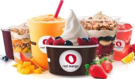 Frozen Yogurt Chain Red Mango Reinvents India Strategy, To