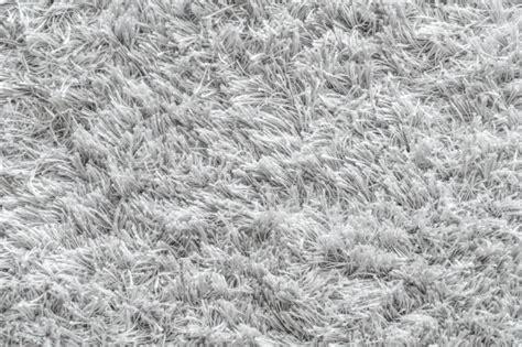 Carpet Vectors, Photos And Psd Files