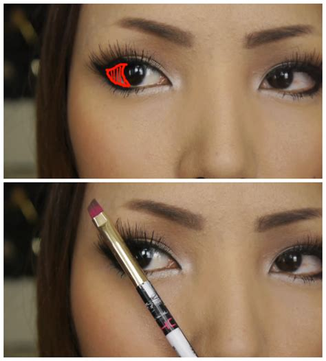 eyes queen beautiful eye brows  beginners