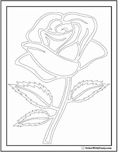 Rose Coloring Pages Outline Stem Printable Printables