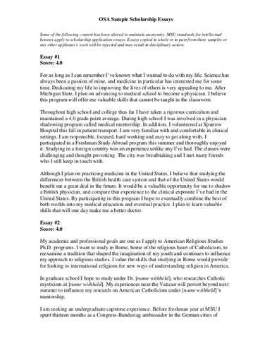 Study Abroad Essays Examples Analytical Essay Template Study Abroad