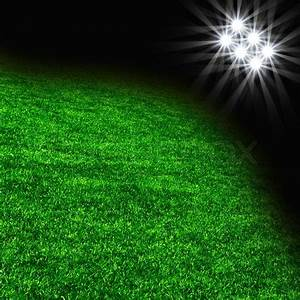 The grass from soccer field Texture of green grass with ...