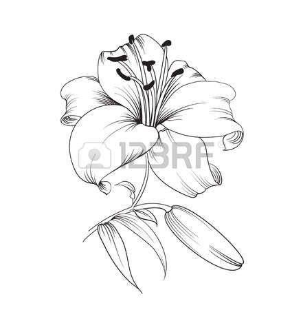 resultat de recherche dimages pour modele dessin fleur