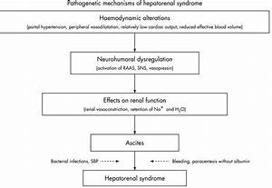 Diagnosis  Prevention And Treatment Of Hepatorenal