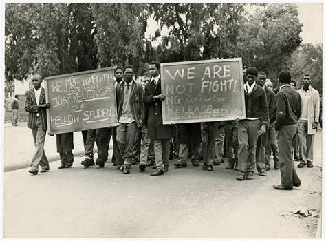 uprising  images cape town uct news