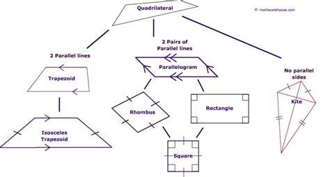 quadrilateral family tree math lesson plans pinterest