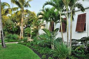 tropical landscaping Landscape Tropical with grass brown