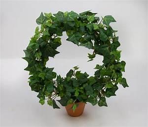 Efeu Pflanzen Kaufen : efeu ring im topf 45cm ga k nstliche pflanzen ebay ~ Michelbontemps.com Haus und Dekorationen