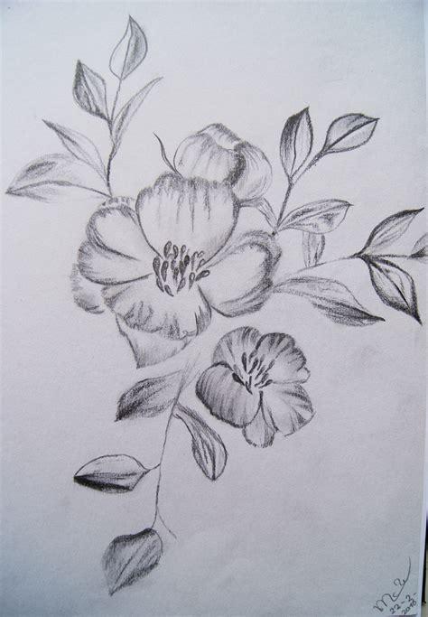 bloem tekenene tekeningen 2 willemse