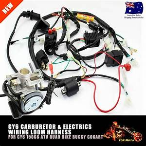 Gy6 150cc Carby Electrics Wiring Harness Quad Atv Buggy