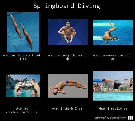Scuba Diving Meme - 8 best diving quotes images on pinterest diving quotes scuba diving quotes and diving springboard