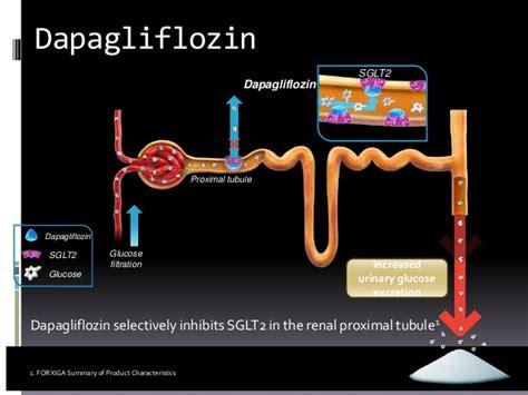 Dapagliflozin- a novel SGLT2 inhibitor