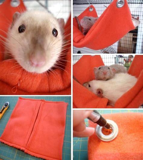 Pet Rat Hammocks by Top 10 Diy Pet Projects Sea Glass Rat Cage Rats Diy