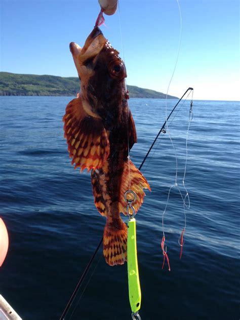 deep sea fishing eagle eye outfitters
