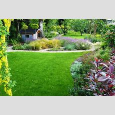 Enticing Family Garden In Greystones, Co Wicklow  Tim