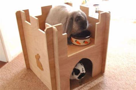 top  mejores juguetes  conejos diversion  tu