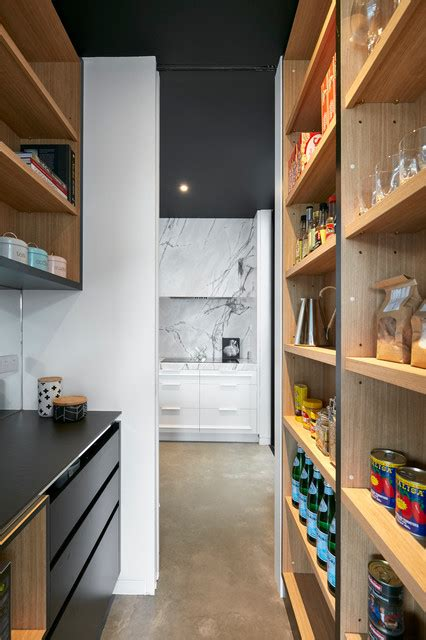 kitchen cabinets suppliers expert eye a brief history of the kitchen pantry 3255