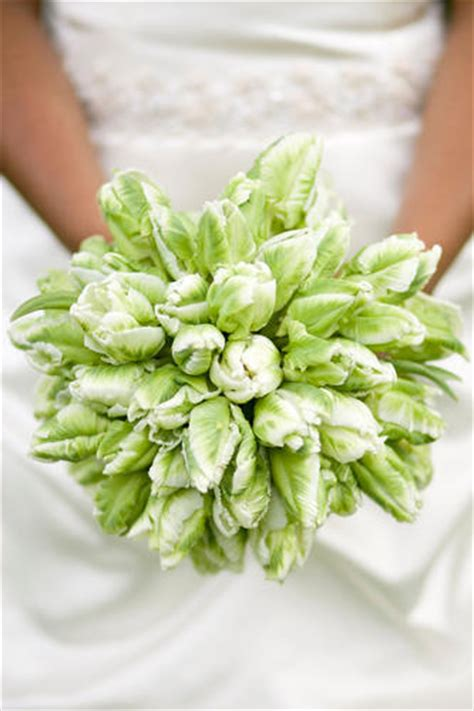 tulip bouquet wedding tulip arrangements how to select and prepare tulips