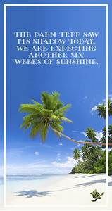 Palm Tree saw i... Inspiring Palm Tree Quotes