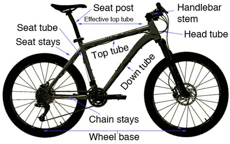 Mountain Bike Sizing What Size Need Bikeradar