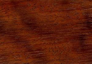 Types of Wood | HotelContractBeds  Wood