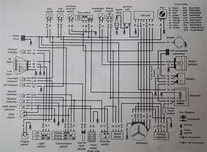 1995 Polaris Indy 500 Wiring Diagram