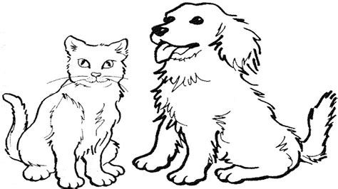 coloring pages   draw  cat  dog easy zaman canvas youtube