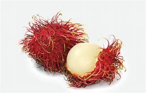 Related Keywords & Suggestions for rambutan fruit