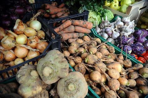 Kartupeļu ražas būšot ievērojami mazākas :: Dienas Bizness