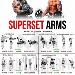 Upper Body Training  U0026 Superset Biceps Blast