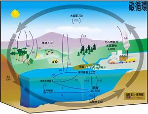 File Carbon Cycle-cute Diagram Zh-hant Svg