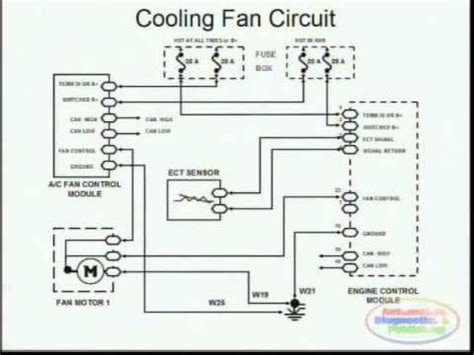cooling fans wiring diagram cooling fans wiring diagram youtube