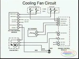 2001 Dodge Caravan Cooling Fan Wiring Diagram Wiring Diagram