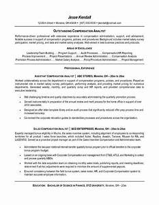 internal resume template resume template easy http With internal resume examples