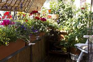 balkon gestalten blumen mobel und deko kalaydoskop With französischer balkon mit garten relaxschaukel