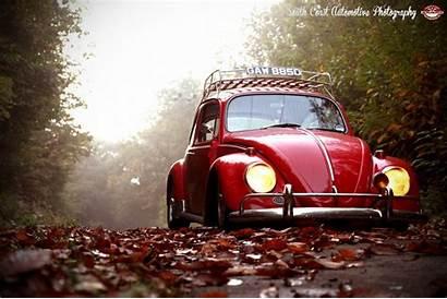 Vw Beetle Volkswagen Classic Custom Bug Nature