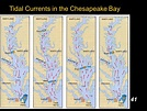 Chesapeake bay tides and currents > THAIPOLICEPLUS.COM