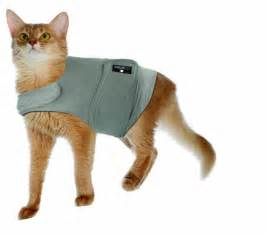relief for cats calm cat anti anxiety and stress relief coat for cats