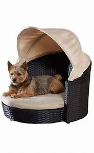 outdoor dog canopy bed chic home ideas pinterest With small outdoor dog bed